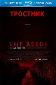 Тростник / The Reeds (2009) Отличное качество