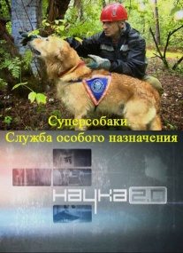 Наука 2.0. Суперсобаки. Служба особого назначения (2010) SATRip