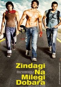 Жизнь не может быть скучной! / Zindagi Na Milegi Dobara (2011) DVDRip