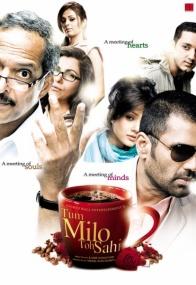 Давай встретимся скорее... / Tum Milo Toh Sahi (2010) DVDRip