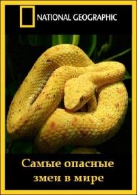 Самые опасные змеи в мире / Worlds deadliest snakes (2010) Отличное качество