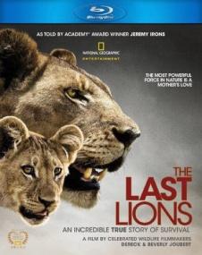 Последние львы / The Last Lions (2011/BDRip/Отличное качество)
