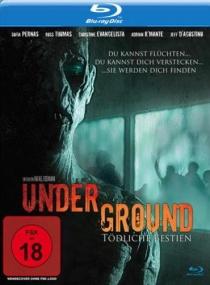Подземелье / Underground (2011/BDRip/Отличное качество)