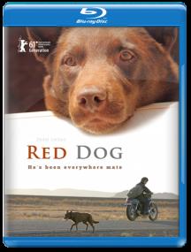 Рыжий пес / Red Dog (2011) Отличное качество
