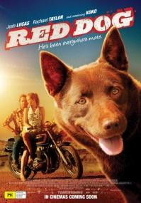 Рыжий пес / Red Dog (2011/BDRip/Отличное качество)