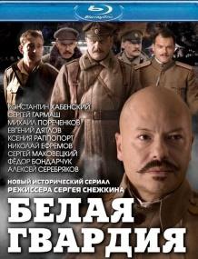 Белая гвардия (2012/Отличное качество)